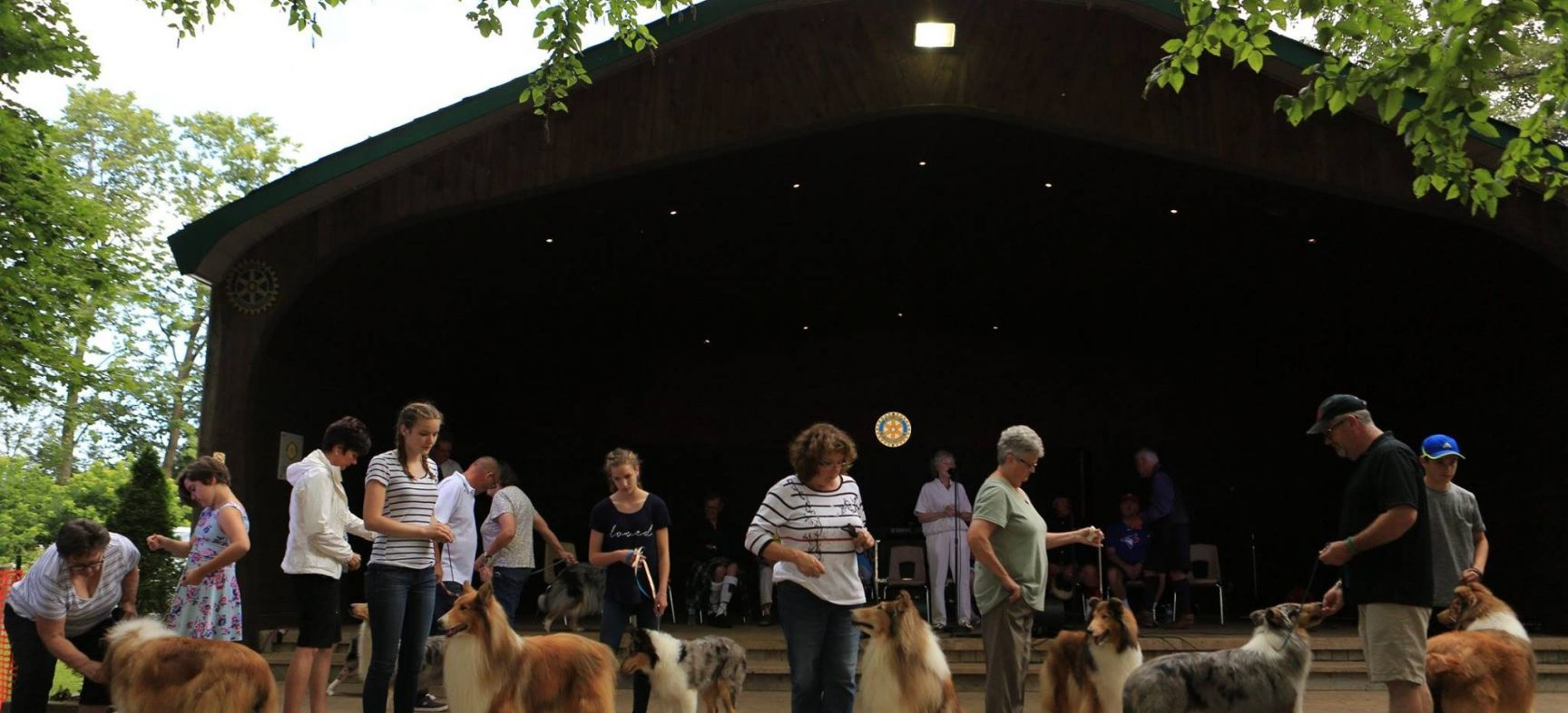 Dog Show. John Cavers Photography
